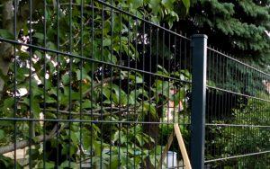 Was kostet ein Gartenzaun pro Meter? - Ampanel.de