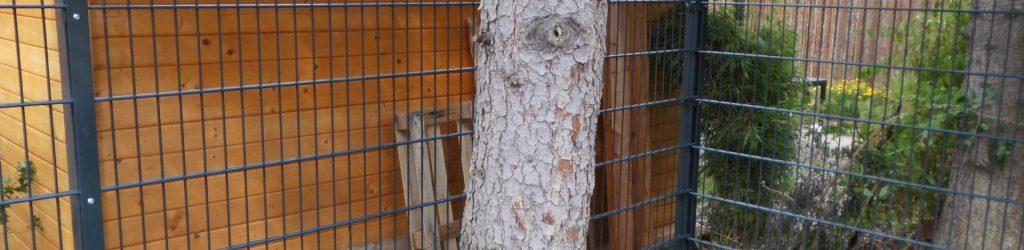 Zaun aus Doppelstabmatten Maße - Ampanel.de