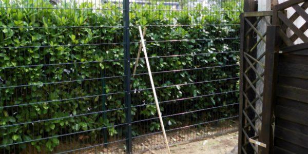 Zaun auf Raten kaufen - Ampanel.de