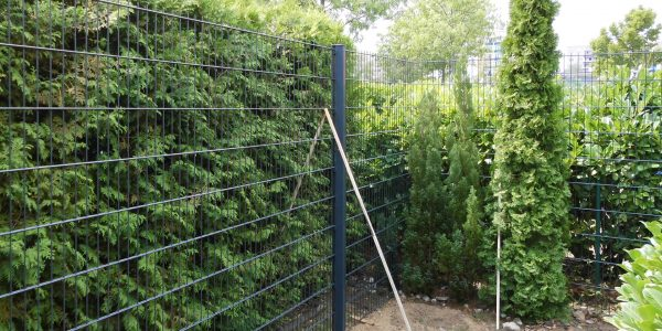 Was kostet ein Doppelstabmatten Gartenzaun? - Ampanel.de