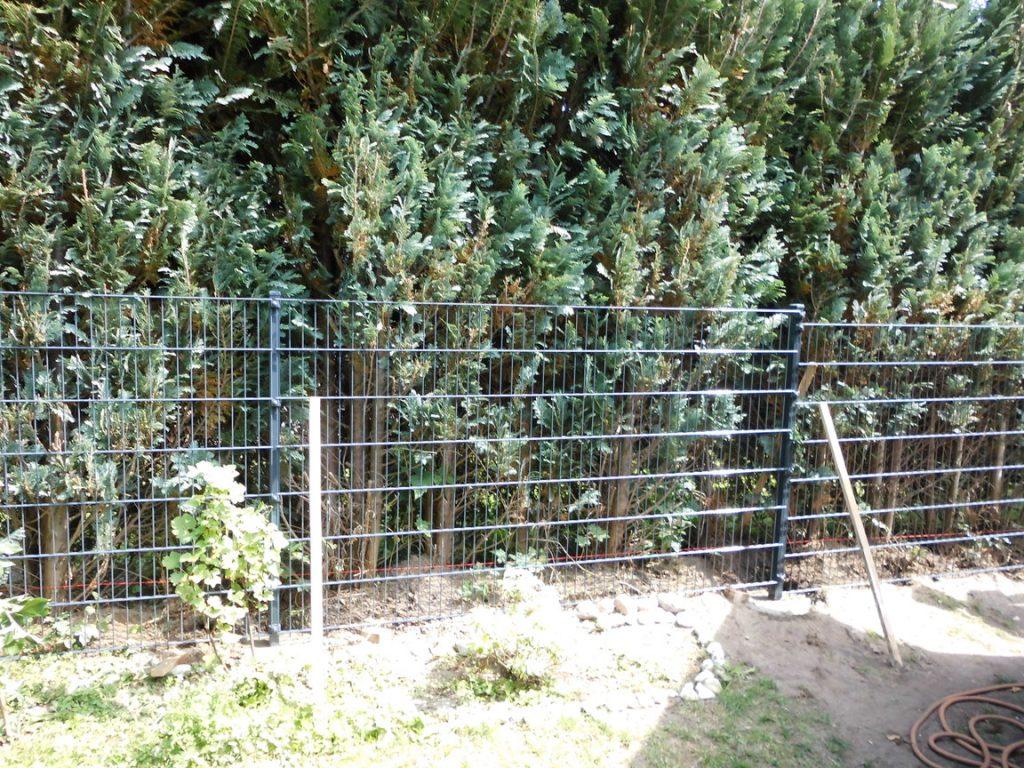 Beste Option für einen Gartenzaun - Ampanel.de
