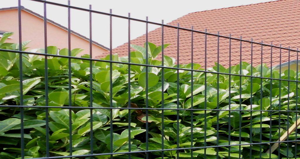 Zaun auf Rechnung bestellen - Ampanel.de