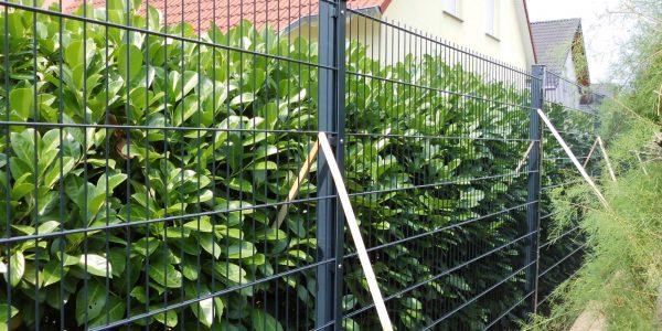 Gartenzaun billig kaufen - Ampanel.de