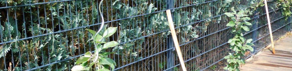 Gartenzäune Metall Preise - Ampanel.de