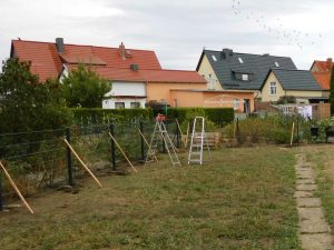 Gartenzaun kaufen günstig - Ampanel.de