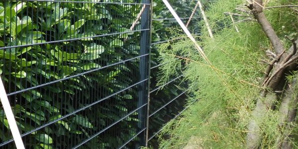 Doppelstabmattenzaun über 2 m hoch - Ampanel.de